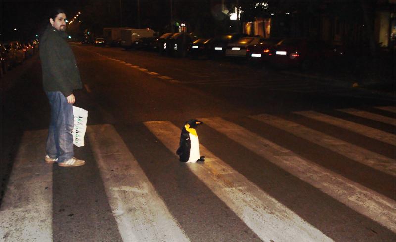 De fiesta con el Pingüino